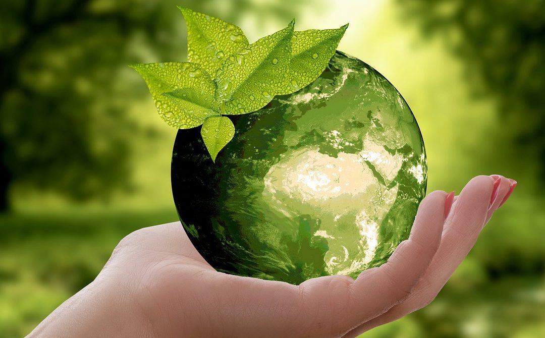 5 terület, ahol csökkenthető háztartásunk/vállalkozásunk ökológiai lábnyoma