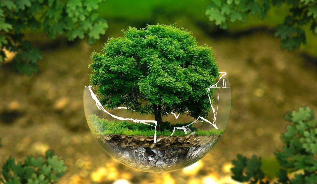10 millió fa országa